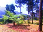 Camping Ground Ipukan